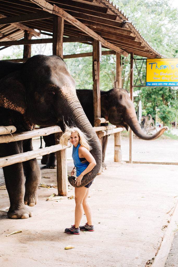 Feeding the Elephants in Pai, Thailand